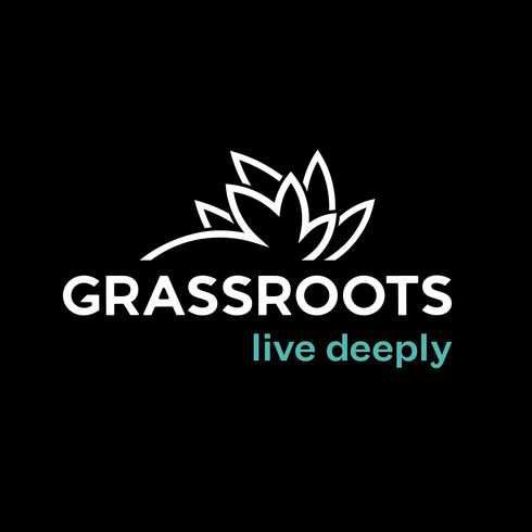 Grassroots RSO Honey Sticks 250mg - RSO