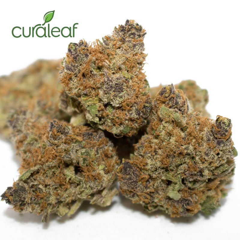 Purple Urkle (1/8oz) - Curaleaf