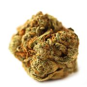 Animal Cookies X Kush Mint | 1g | Top Shelf at Curaleaf AZ Youngtown