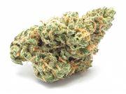 Flower 3.5g - Blue Dream at Curaleaf AZ Youngtown