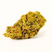Flower 3.5g |  Firefly OG at Curaleaf AZ Youngtown