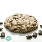 Chocolate Chunk Cookie 100mg at Curaleaf AZ Youngtown