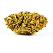 Cactus Breath | 1g | Top Shelf at Curaleaf AZ Bell