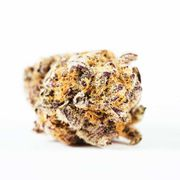 Flower 3.5g - Purple Punch at Curaleaf AZ Youngtown