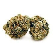Mandarin Cookies 3.5g Hybrid 25.3% at Curaleaf Maine