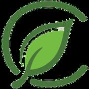 GreenL Raw Tips at Curaleaf Takoma