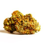Purple Orange CBD |3.5g at Curaleaf AZ Gilbert