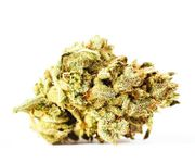 1FNF*PR [VS] FLOWER 1g - Garlicane at Curaleaf AZ Gilbert