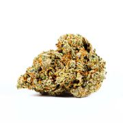 Jack Herer | 3.5g | Baseline at Curaleaf AZ Youngtown