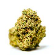 1FTG*T Flower 3.5g - Rick Sanchez at Curaleaf AZ Midtown