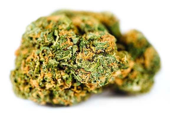 Lemon Skunk | 3.5g | Top Shelf - TIERRA GROW